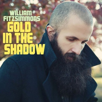 WILLIAM FITZSIMMONS 'Gold in the shadow' - Download