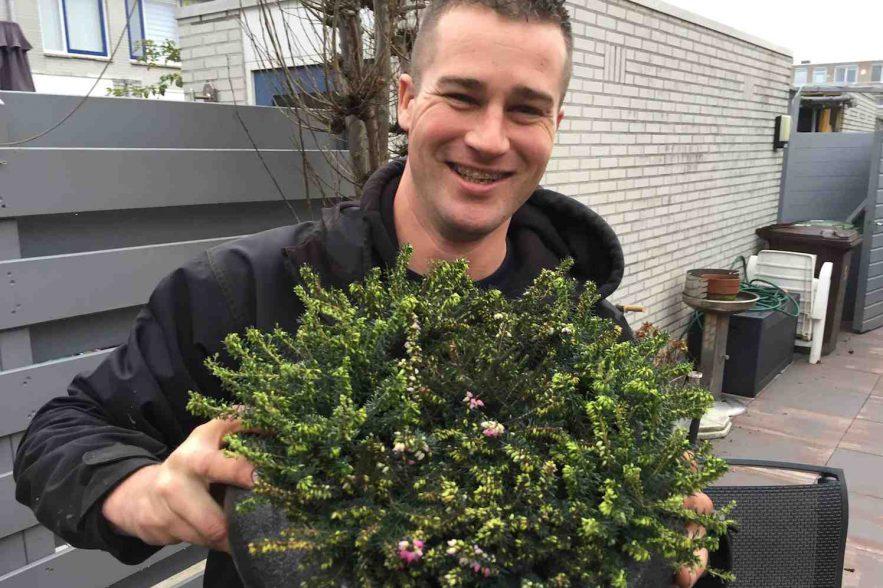 Plantenlijst Robs Grote Tuinverbouwing 2101  GroenVandaag