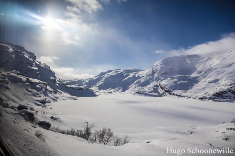 Besneeuwd uitzicht vanuit de trein Bergensbanen tijdens de treinreis.