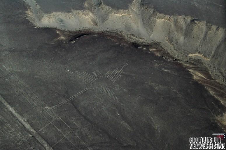 De kolibrie: één van de Nazcalijnen gezien vanuit de lucht lijkt het een vogel.