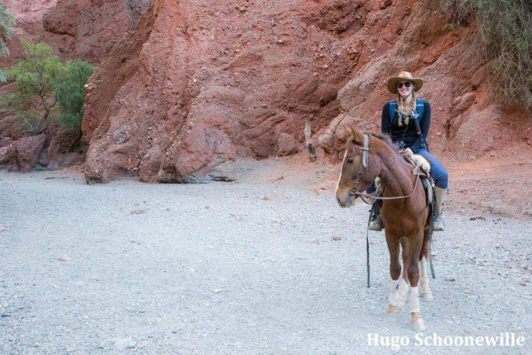 Paardrijden Tupiza
