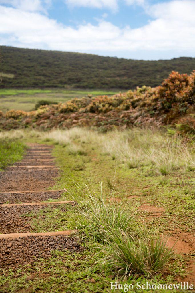 El Junco trail