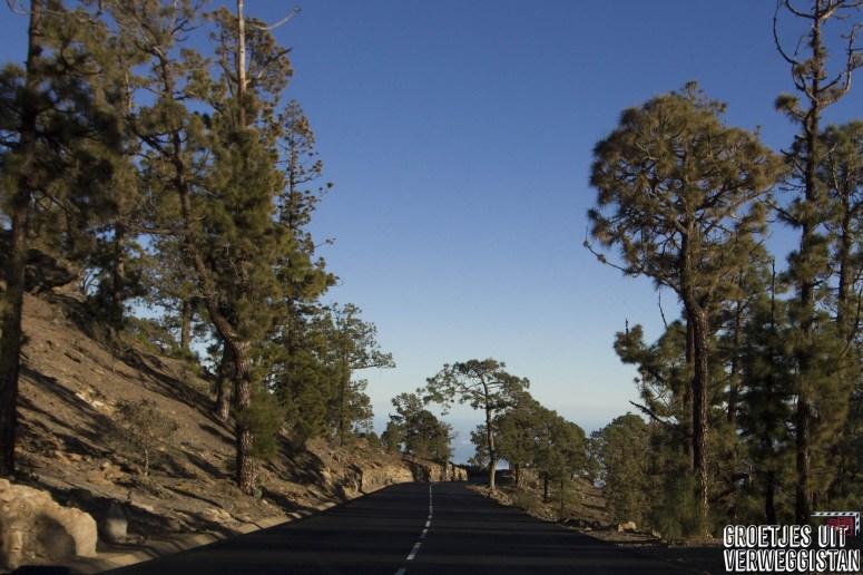 Weg door het vulkanische landschap van Parque Nacional del Teide op Tenerife.