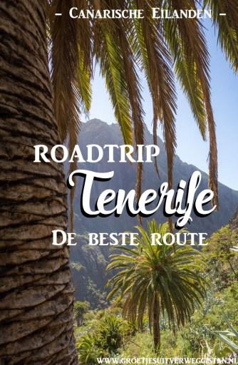 Uitzicht over Tenerife met palmbomen en bergen. Met tekst: roadtrip Tenerife: de beste route