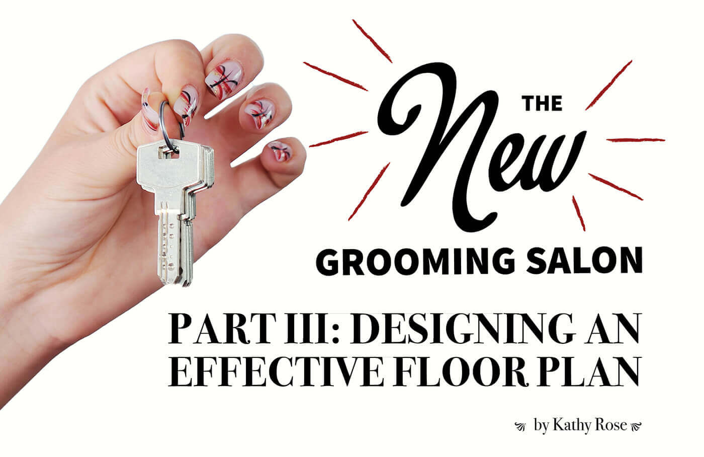 The New Grooming Salon Part III: Designing An Effective
