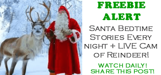 SANTA and Reindeer CAM for FREE EVERY DAY!