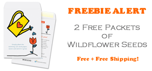 Free Wildflower Seeds of Gratitude