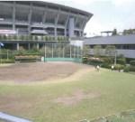 横浜ラポール(野球場/テニスコート/陸上)
