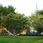 平方公園(野球場/庭球場)