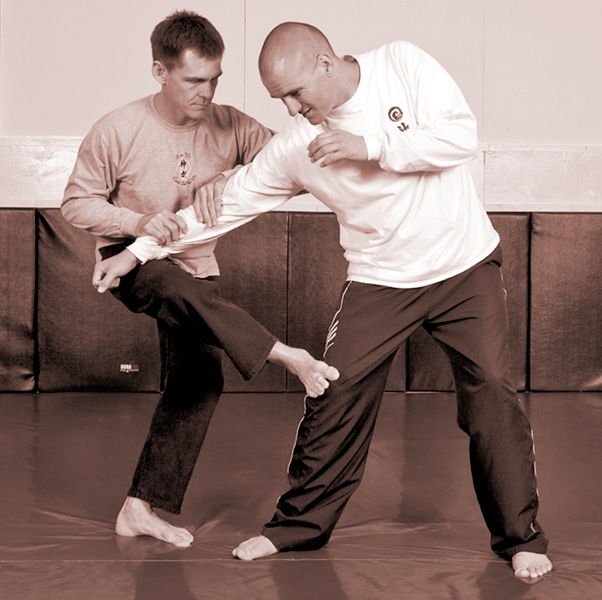 throwing-techniques-in-the-internal-martial-arts-an-elucidation-of-the-guiding-principle-of-sticking-and-following-426