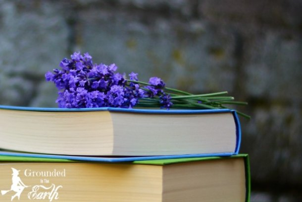 Herbalism Books for Witches