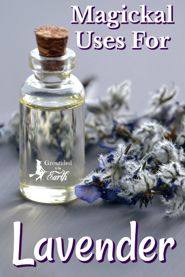 Lavender is such a magical herb. These magickal uses for lavender are perfect for any witch.