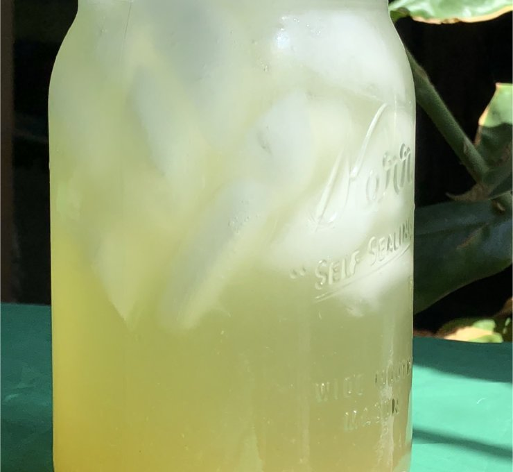 Sparkling Green Tea