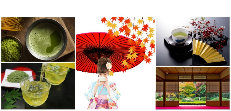discover Japanese green tea