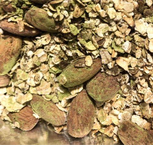 Mix matcha and hojicha with other ingredients