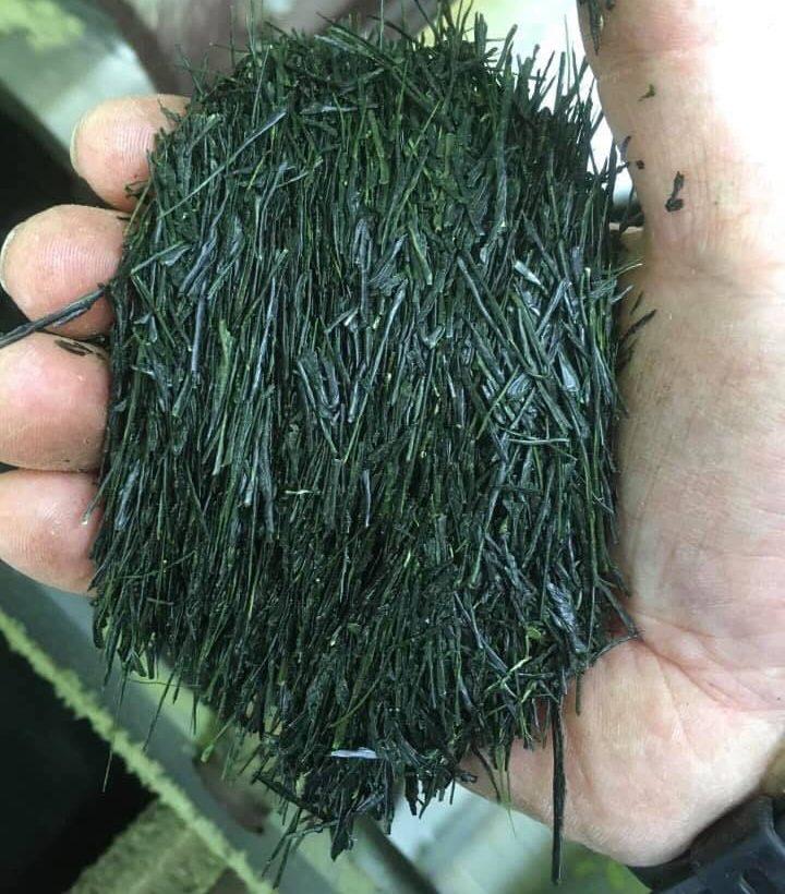 Fresh Needle Shaped Green Tea
