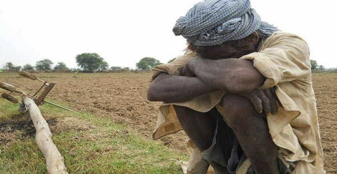 Over 44% of rural households are OBC; NSO survey