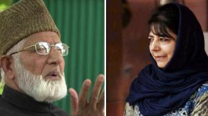 From Geelani and Mehbooba's families