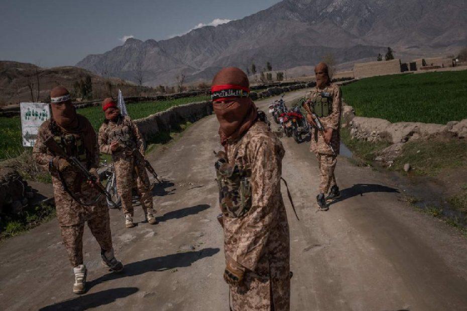 Pakistani fighters and Taliban