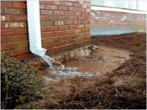 why septic tanks fail