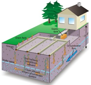 septic system water travel