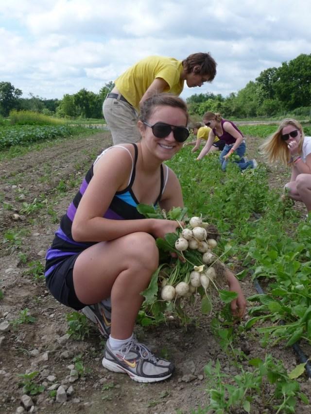 Student Profile: Ellie Limpert (Summer Practicum 2010)