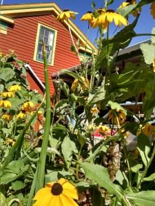 Homestead Farmer & Gardener Network Meeting: Ott Homestead