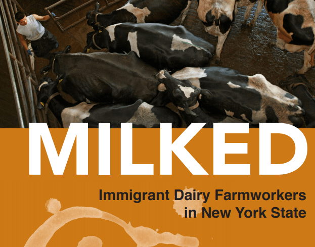 "A Forum with Dairy Farmworker Leaders and Their Advocates:  Findings from the ""Milked"" Report"