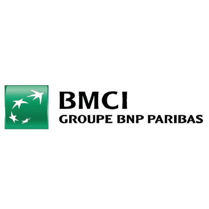BMCI 100-01