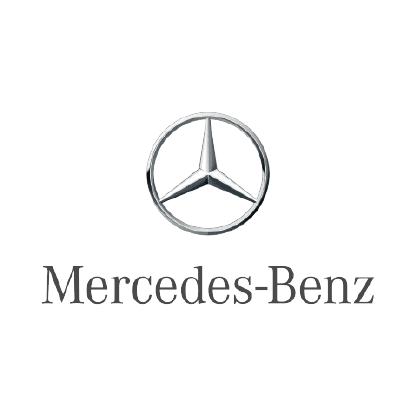 Mercedes 100-01