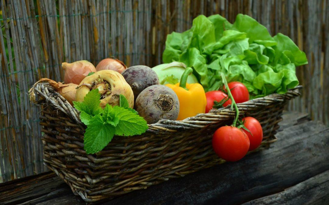 étude de marché fruits et légumes