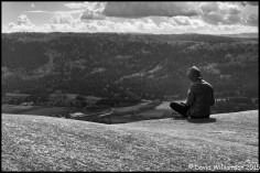 Contemplation At 362 Meters