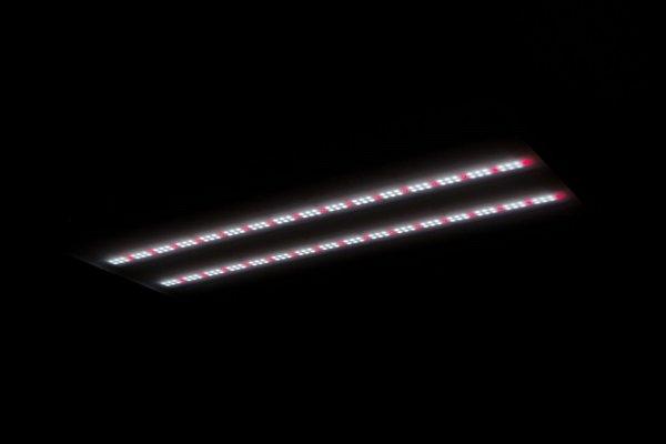 S3 450w Veg Spectrum Commercial LED Grow Light