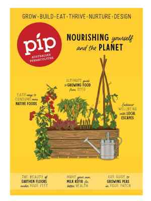 Pip Magazine Issue 21 Cover