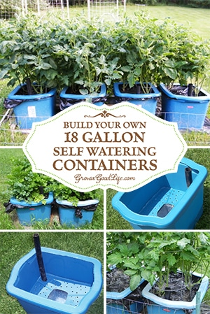 Build Your Own Self Watering Containers