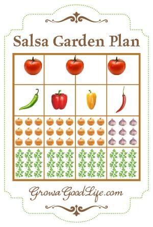 Grow A Salsa Garden