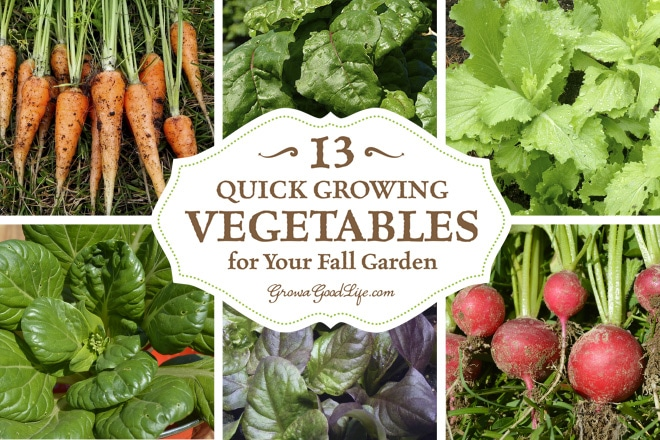 as fall approaches most of the summer crops begin to wind down instead of