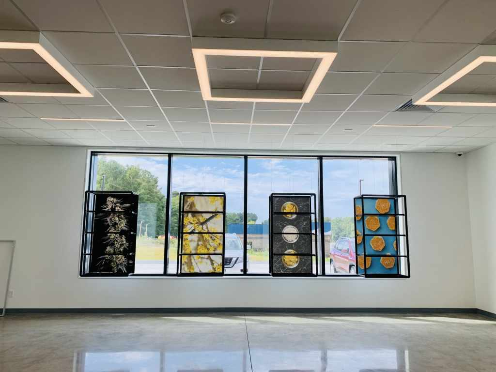 Stained Glass Dispensary
