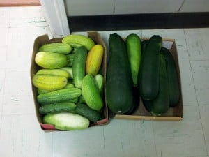 RBM GA box of cucumbers and a box of zucc's