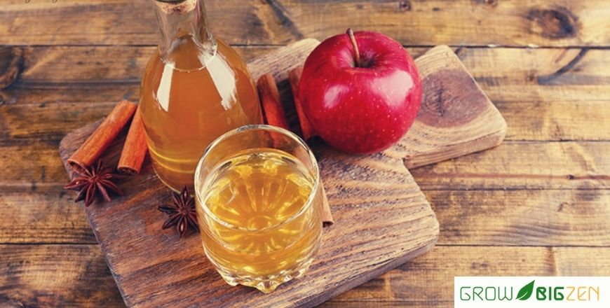 Benefits of apple cider vinegar and Side effects: How to prepare at home?