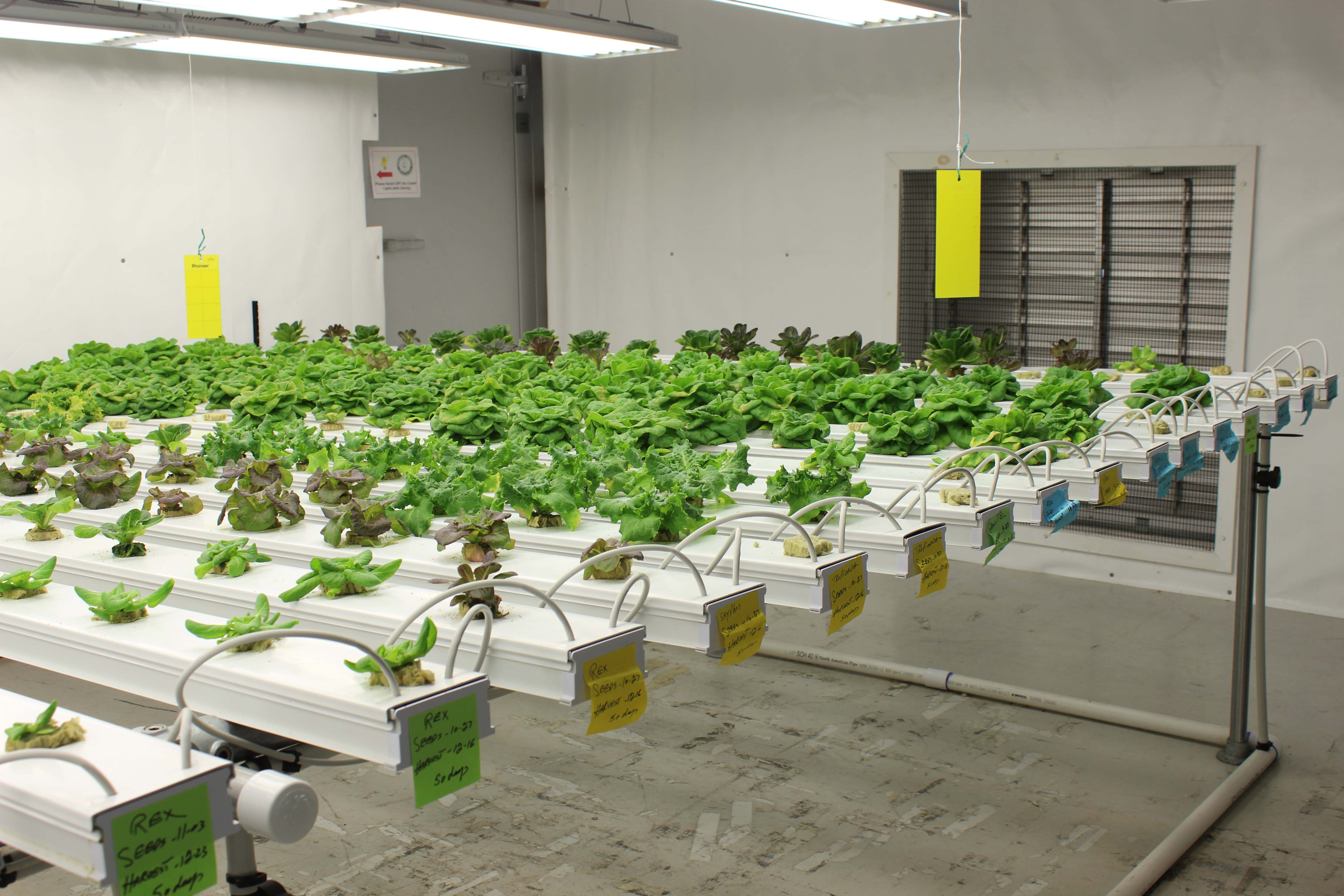 Tour The Technology Center East Grow Rooms