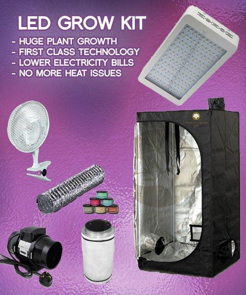 Cfl Grow Light Bulbs