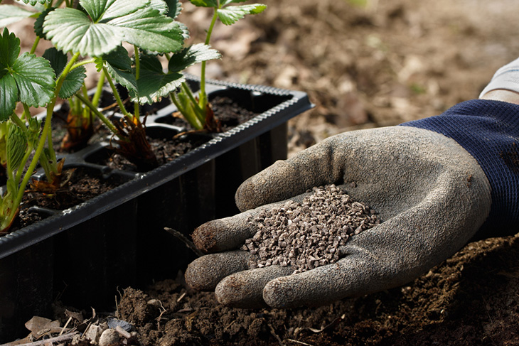 How to Use Plant Nutrients and Extend the Life of Your Soil