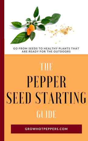 The Pepper Seed Starting Guide ebook flat cover