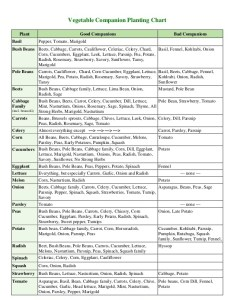 Click on either image below to save and print so you can bring it with the garden florida companion planting chart also growin crazy acres rh growincrazyacres