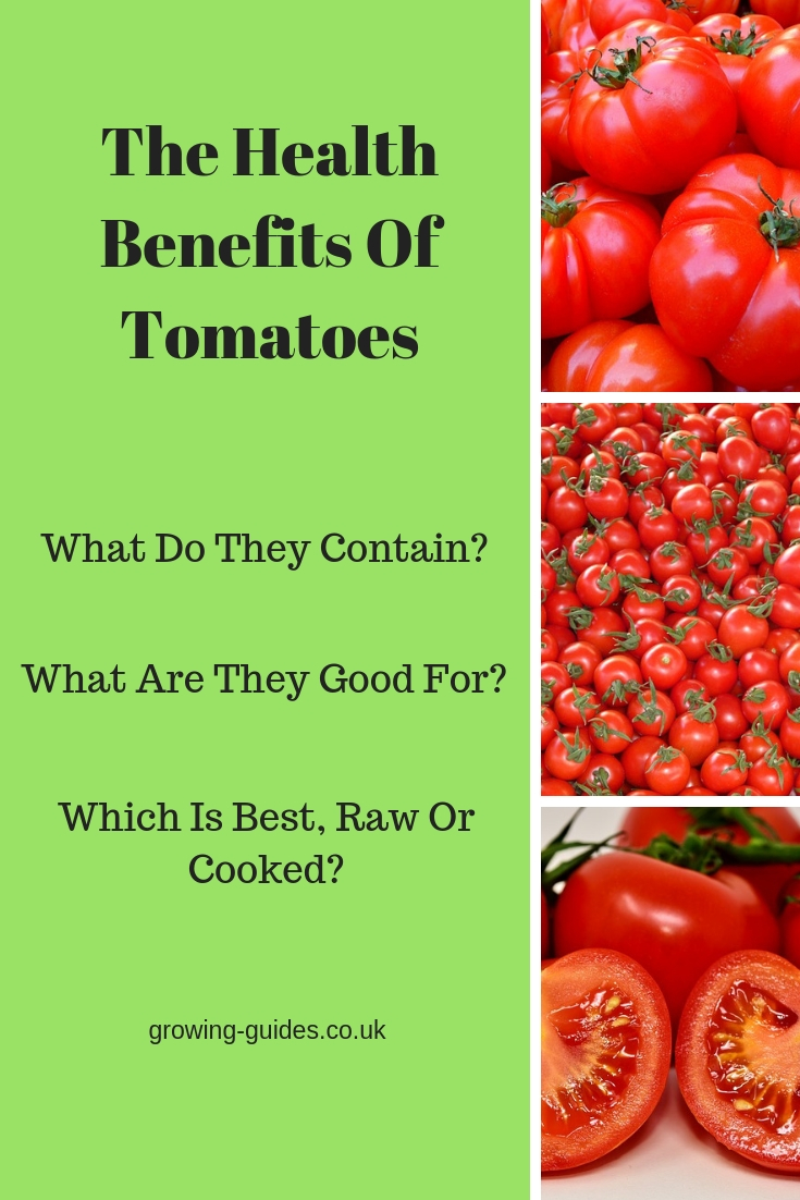 The Health Benefits Of Tomatoes   Growing Guides
