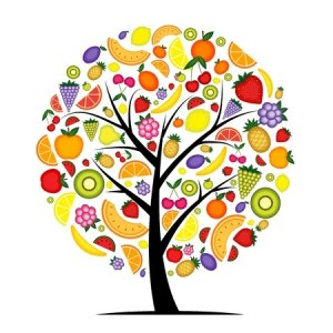 Discipleship Study - The Parable Of The Unfruitful Fig Tree - Luke 13:6-9 - Growing As Disciples