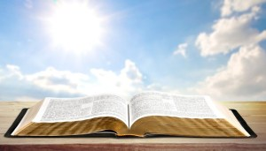 Discipleship Devotional Study Guide - Miracles - Exodus 16:4 - Rain Down Bread From Heaven - Growing As Disciples