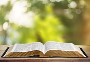 Discipleship Devotional Study Guide - Word Of God - Ephesians 6:17 - Sword Of The Spirit - Growing As Disciples