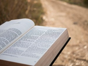 Discipleship Devotional Study Guide – Becoming Like Christ - Day 320 - Luke 24:45-49 - Opened Their Minds - Growing As Disciples